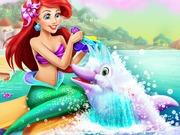 Ariel Dolphin Wash