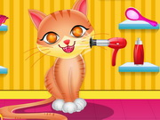 Cute Cat Care
